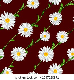 Seamless pattern from field chamomiles on stems diagonally on claret background