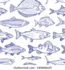 Seamless pattern with fish hand drawn with contour lines on white background. Backdrop with marine animals or aquatic creatures living in sea, ocean, freshwater pond. Monochrome vector illustration.