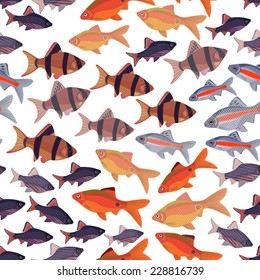 Seamless pattern fishes aquarium barbs, EPS10 - vector graphics.