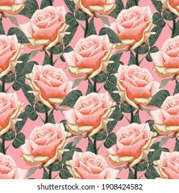 Seamless pattern floral beautiful pink pastel Rose flowers vintage abstract background.Vector illustration hand drawing dry watercolor.for fabric textile design or Product packaging