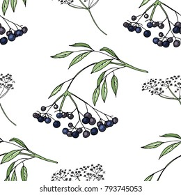 Seamless pattern with floral elements on white. Endless texture with elder berries