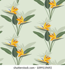Seamless pattern with flowers of a bird of paradise. Strelitzia, vector illustration. For decorating textiles, packaging and wallpaper.