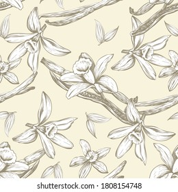Seamless pattern with flowers and vanilla sticks. Orchid. Natural vector hand drawn illustration for printing fabric, wrapping paper, packaging.