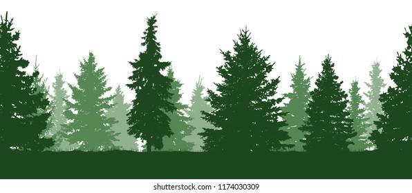 Seamless pattern. Forest, green fir trees silhouette. Vector
