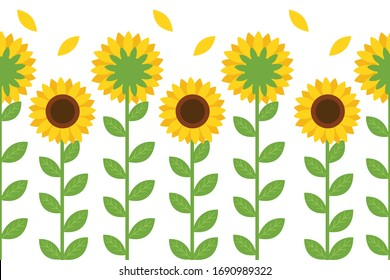 The seamless pattern front of sunflower and back of sunflower in flat vector style. illustation cute sunflower for background, greeting card,graphic,banner.