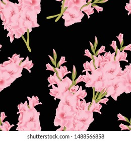 Seamless pattern with gladiolus flower bouquet black background