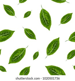 Seamless pattern. Green leaves on white background. Vector.