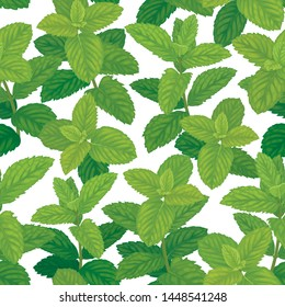 Seamless pattern of green mint leaves on background template. Vector set of herbal element for advertising, packaging design, greeting card and fashion design.