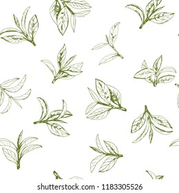 seamless pattern with green tea, hand-drawn leaves and branches of tea