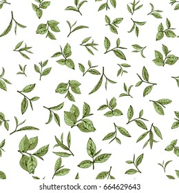 seamless pattern green tea, hand-drawn leaves and branches of tea
