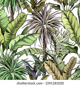 Seamless pattern with green tropical trees. Yucca plants and large banana leaves. Hand drawn vector illustration.