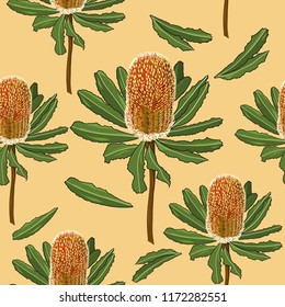 Seamless pattern of hand drawn Australia banksia flower