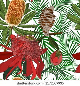 seamless pattern of hand drawn australia wild native flower banksia and waratah