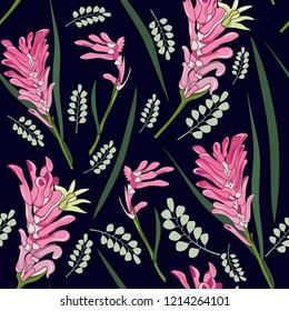 seamless pattern of hand drawn Australia native pink kangaroo paw flower illustration on navy background