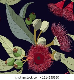 seamless pattern of hand drawn australian gum nut flowers on dark navy background in vector illustration