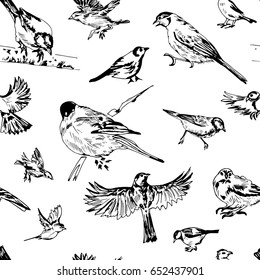 Seamless pattern with hand drawn birds sketches. Vector.