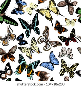 Seamless pattern with hand drawn butterflies. Vector illustration