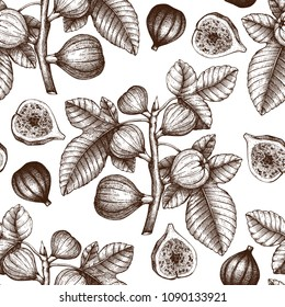 Seamless pattern with hand drawn figs sketch. Vector background with engraved fig fruit branch. Vintage illustration with botanical elements. Summer design.