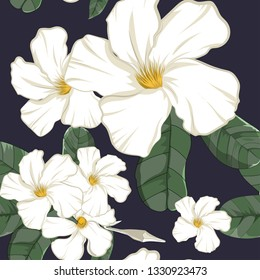 seamless pattern of hand drawn flower element,white allamanda with leaf in vector illustration