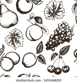 Seamless pattern with hand drawn fruits and berries illustrations. Vintage background for restaurant or cafe menu.  Healthy food drawin: apricot, apple, grapes, pear, peach.