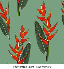 seamless pattern of hand drawn heliconia lobster claw plant