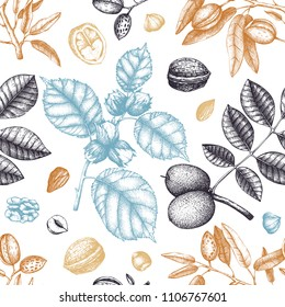 Seamless pattern with hand drawn nuts. Vintage hazelnut, walnut, almond illustrations. Engraved style organic food background.