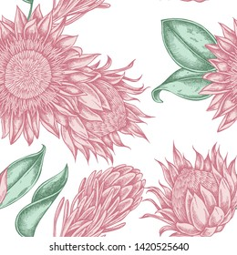 Seamless pattern with hand drawn pastel king protea