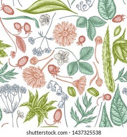 Seamless pattern with hand drawn pastel aloe, calendula, lily of the valley, nettle, strawberry, valerian