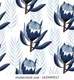 seamless pattern of hand drawn protea, australia native flower in blue shade isolated on white background