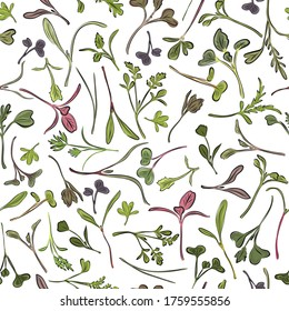 Seamless pattern. Hand drawn rainbow chard micro greens. Chard, radish, beet,carrot, cabbage. Vector illustration in sketch style on white background. Vitamin supplement, vegan food.