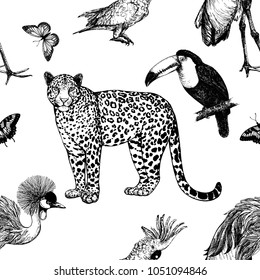 Seamless pattern of hand drawn sketch style leopard, exotic birds and butterfly isolated on white background. Vector illustration.