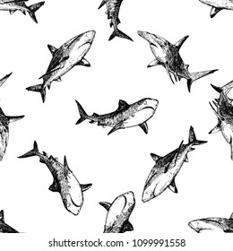 Seamless pattern of hand drawn sketch style sharks isolated on white background. Vector illustration.