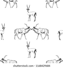 Seamless pattern of hand drawn sketch style lesser kudu antelope and gazelle isolated on white background. Vector illustration.