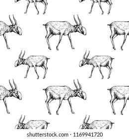 Seamless pattern of hand drawn sketch style saiga antelopes isolated on white background. Vector illustration.