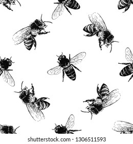 Seamless pattern of hand drawn sketch style bees isolated on white background. Vector illustration.