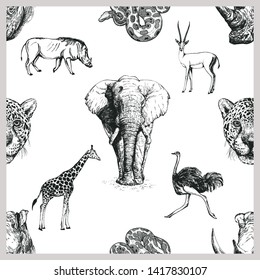 Seamless pattern of hand drawn sketch style African and Asian animals isolated on white background. Vector illustration.