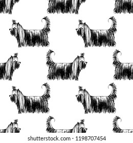 Seamless pattern with hand drawn Yorkshire Terriers. Vector illustration in retro style