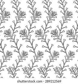 Seamless pattern with herb