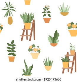 Seamless pattern with home plants in yellow and orange pots. Succulents, abstract flowers, lush foliage on decorative wooden stand ladder. Vector illustration isolated on white background