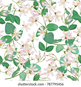 Seamless pattern with honeysuckle