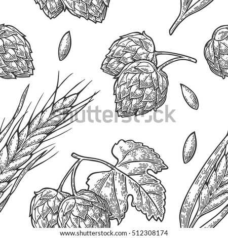 759ae08984a Seamless pattern from hop with leaf and Ear of barley. Isolated on white  background. For poster with production process brewery beer. Vector color  vintage ...