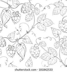 Seamless pattern hop. Vector illustration.