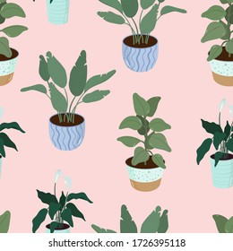 Seamless Pattern with houseplants in pots. Home flowers. Set of Vector illustration for print, fabric, textile