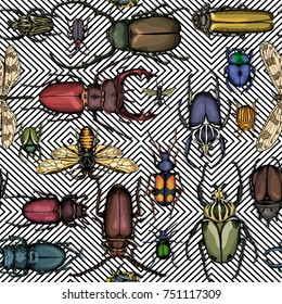 Seamless pattern with image of a Bright insects on a geometric background. Vector illustration.