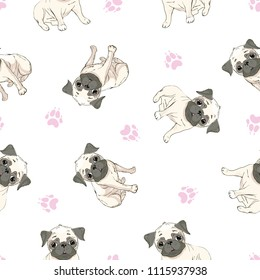 Seamless pattern with image of a Funny cartoon pugs puppies . Vector illustration
