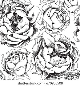 Seamless pattern with image of a Peony Cytherea and Pion-shaped rose. Vector black and white illustration.
