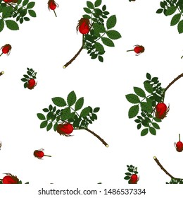 Seamless pattern with the image of wild rose berries with flowers and green leaves. Vector illustration