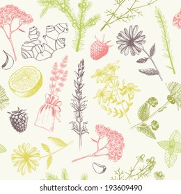 Seamless pattern with ink hand drawn medicinal herbs and plants. Pastel herbal background.