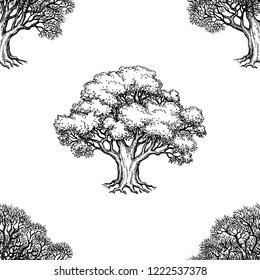 Seamless pattern. Ink sketch of two oaks. Winter and summer tree. Hand drawn vector illustration isolated on white background. Retro style.
