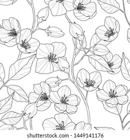 Seamless pattern of jasmine flowers and leaves, vector